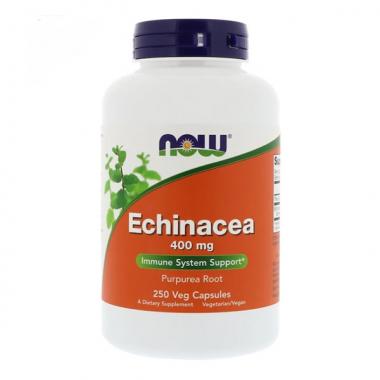 NOW Echinacea 400 mg (250 капсул) - Эхинацея (корень) / США